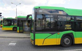 fot. ZTM Poznań